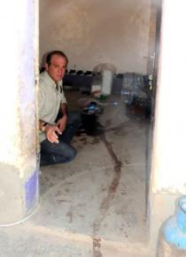 Şengal Dağı\'nda katliamın izleri ve göç