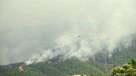 150 hektar çam ormanı kül oldu