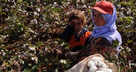 Hem tarım işçisi, hem kadın, hem Kürt