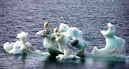 Çevre sorunları geleceği tehdit ediyor