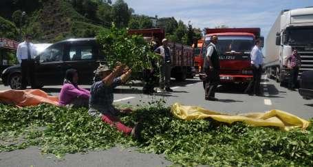 Yol kapatan çay üreticilerine jandarma müdahalesi