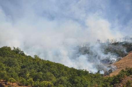 Dersim'de yangın yayılıyor