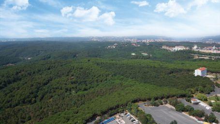 Maslak'taki Fatih Ormanı talana hazırlanıyor…