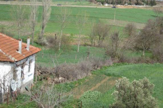 'Anadolu'da bir köy mezarlığına gömün beni'