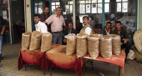 Adıyamanlı tütün üreticileri kurultaya hazırlanıyor
