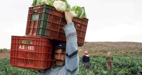 Çiftçilerin günlerini kutlayacak halleri yok
