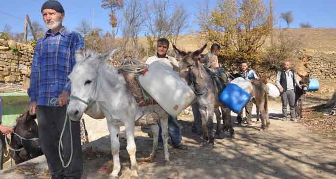Kadifelerle su taşıyorlar