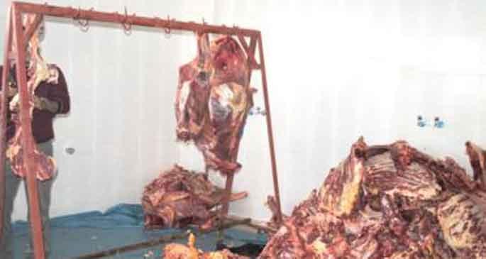Kaymakamlığın dağıttığı et bozuk çıktı!