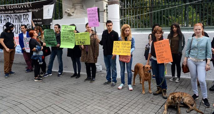 Kurban kesimini protesto ettiler
