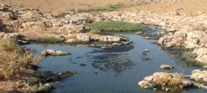 Mülteci kampının lağım suları çevre köylere akıyor