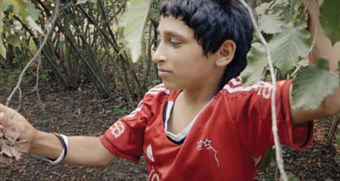 Pikolo: çocuk işçilerin hikayesi