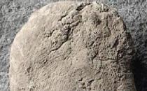 10 bin yıllık parmak izi