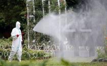 Japonya ve ABD'de sivrisinek alarmı