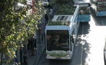 Topbaş, kestiği  ağaçları otobüse dikti!