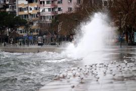 2019 İklim Değerlendirmesi raporu: Türkiye'de ekstrem hava olaylarında rekor kırıldı