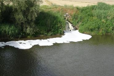 Büyük Menderes Nehri'nde endişe veren kirlilik