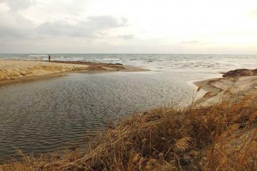 Sarımsaklı Sahili'ne dökülen Nikita Deresi simsiyah aktı