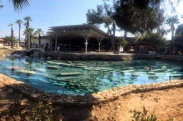 """Mimarlar Odası Denizli Şubesinden """"Antik Havuz"""" için acil iyileştirme çağrısı"""