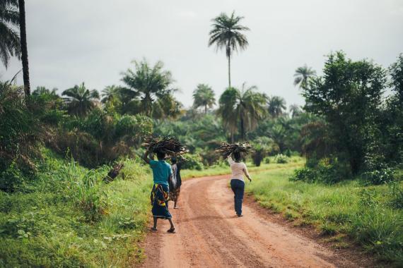Afrika'da Kovid-19 salgınında vaka sayısı  421 bin aştı