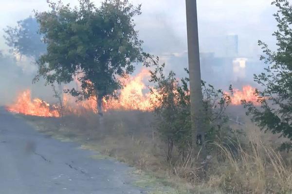 Çekmece Nükleer Araştırma Merkezi yakınındaki yangın kontrol altına alındı