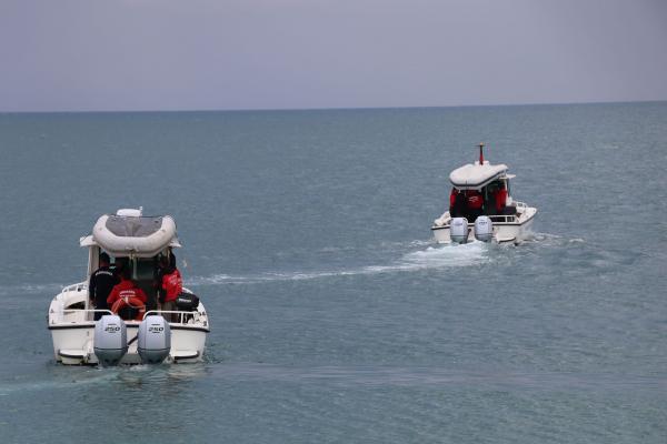 Van Gölü'den arama motorları