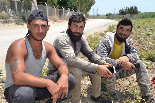 Adana'da tarım işçiliği yapan Suriyeli mülteci Halil Hasan ve arkadaşları