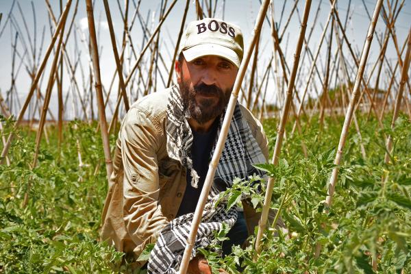 Mevsimlik tarım işçiliği yapan Zihni Sari.