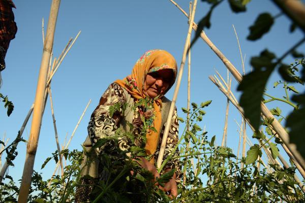 Mevsimlik tarım işçiliği yapan Zine Elğaz.