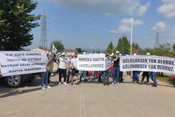 ASD Laminat işçileri