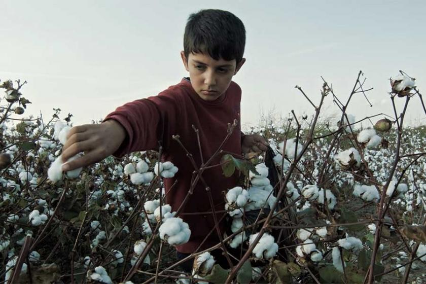 Pamukla pamuk şeker arasındaki çocuk işçiler