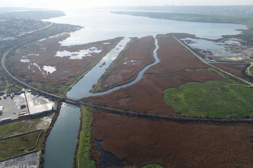 Orman mühendisi Sertok: Kanal İstanbul kirli hava taşıyacak