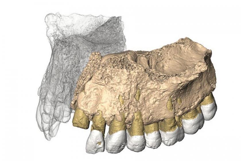 Afrika dışındaki en eski insan fosili bulundu