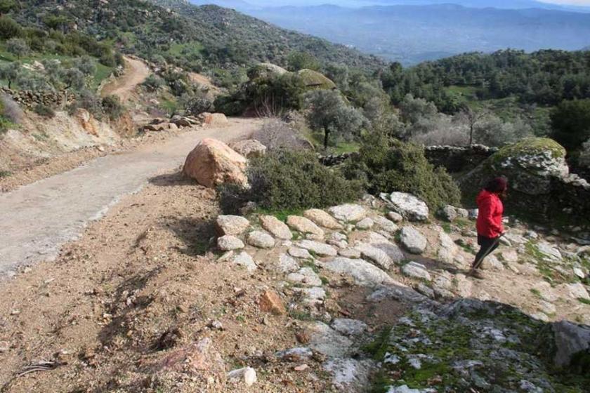 Köylüler zeytinliklere yol açmak için antik yolu tahrip etti