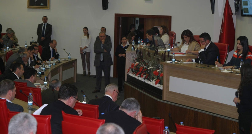 Belediye Meclisinde incir ağacı kesme tartışması