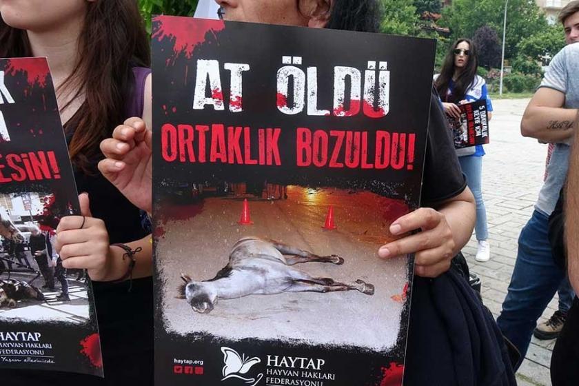Atlı faytonların kaldırılması talebiyle Kadıköy ve Büyükada'da eylem