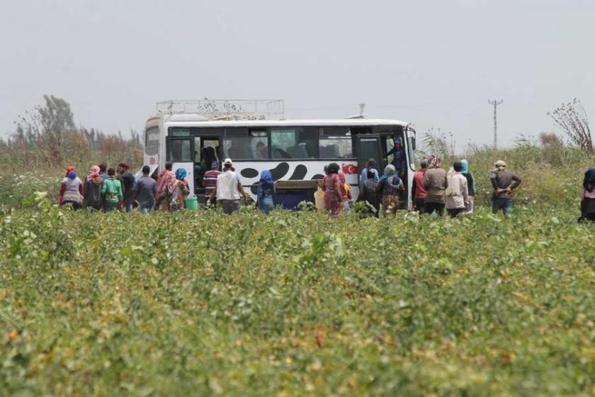 Konya'da 65 yaşındaki mevsimlik tarım işçisi ölü bulundu