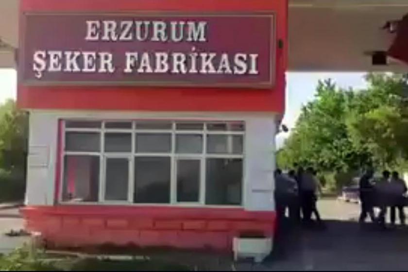 Şeker fabrikalarının özelleştirilmesinin ardından sürgünler