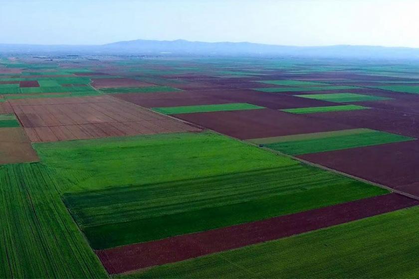 Tarım alanlarını yok eden yönetmeliğe Danıştay 'dur' dedi