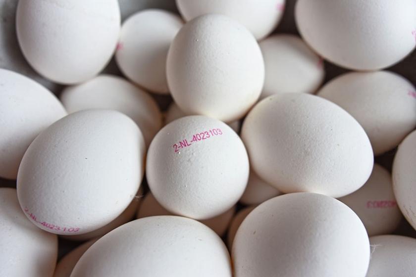 Market fiyatı yüzde 27 artan yumurta da lüks oldu!