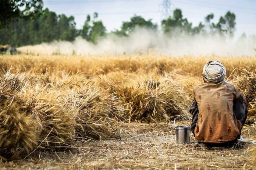 'Tutarlı tarım politikası izlenmezse Türkiye'yi kıtlık bekliyor'