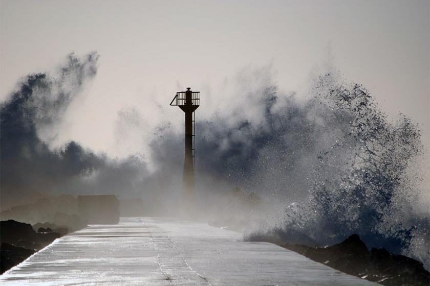Japonya'da Trami tayfunu hayatı felç etti: 82 yaralı