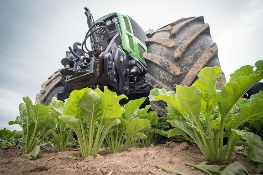 Şeker fabrikaları kapandı; pancar üreticileri fiyat endişesi yaşıyor