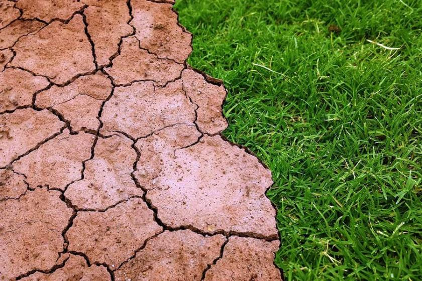 IPCC raporu: Küresel ısınmayı 1,5°C'de tutmanın önemi büyük