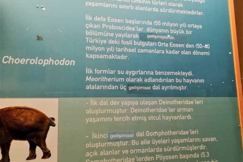 Evrim müzesinde 'evrim'e sansür