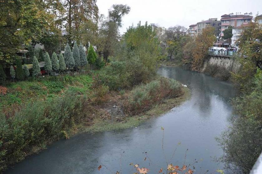 Bartın'da ırmak suyu fabrika atıkları yüzünden siyah akıyor