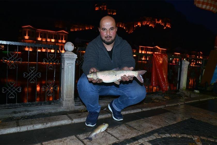 Yeşilırmak'ta toplu balık ölümü görüldü