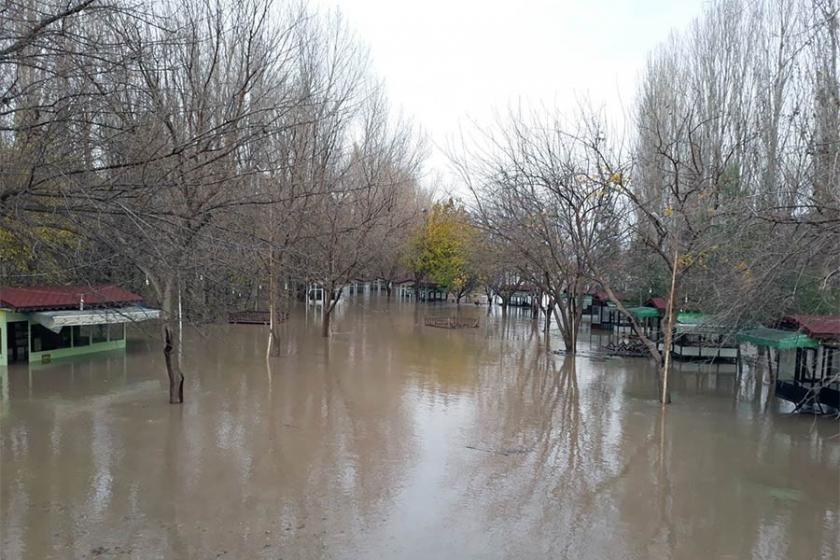 Dicle Barajı'nda ihmaller zinciri çevre felaketine yol açtı