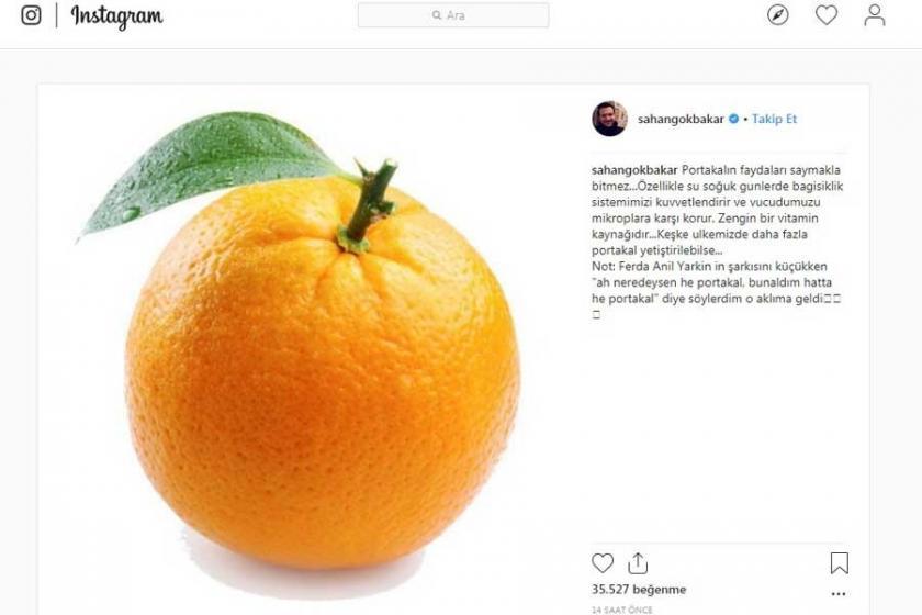 Şahan Gökbakar: Portakalın faydaları saymakla bitmez