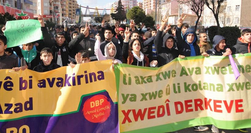 Diyarbakır'da 'doğamıza sahip çıkıyoruz' yürüyüşü