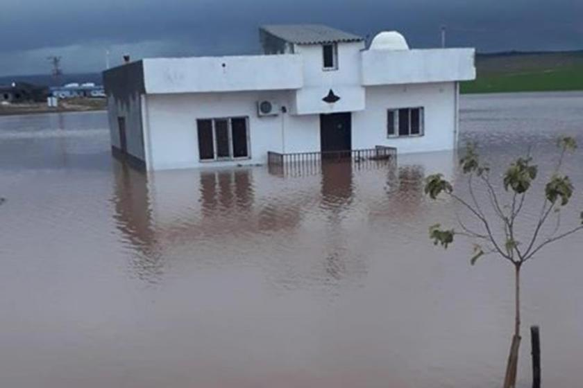 Mardin'de evler ve tarım arazileri yağmur suyu altında kaldı